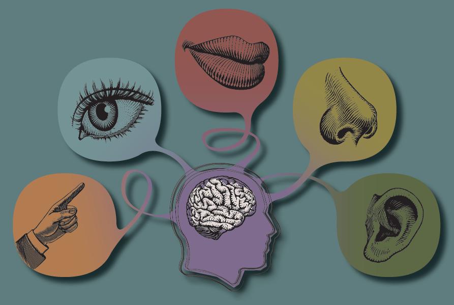 Persuasão e estímulo ao consumo através dos cinco sentidos